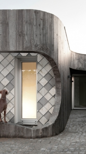 OPUS RETICPLATUM by Wall and Deco