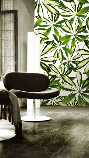 JUNGLE by Wall and Deco