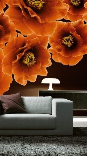 BLOOM by Wall and Deco