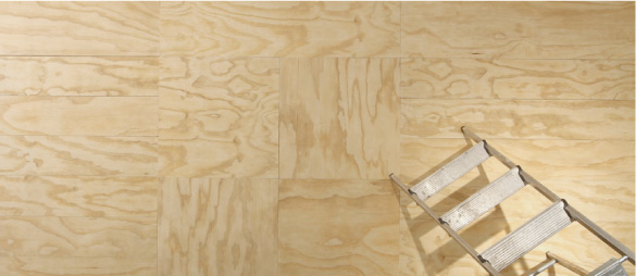 Plywood Effect Tiles Ireland at Tiles.ie